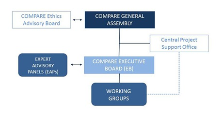 COMPARE Project Management Structure
